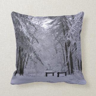 Almohada del ~ de la catedral del hielo