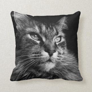 Almohada del gato de Coon de Maine