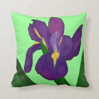 Almohada del iris