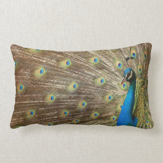 Almohada del pavo real cojín lumbar