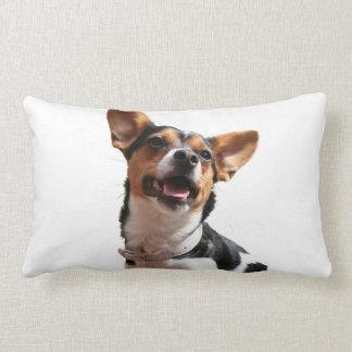 Almohada del perro de la chihuahua