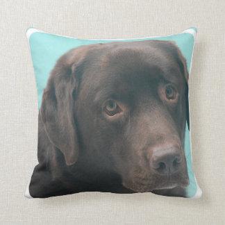 Almohada del perro del laboratorio del chocolate