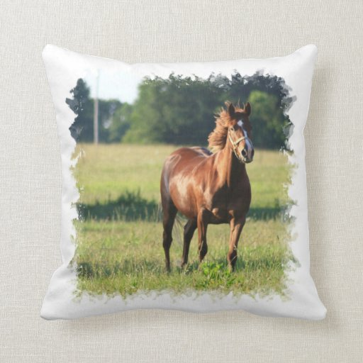 Almohada derecha del caballo de la castaña