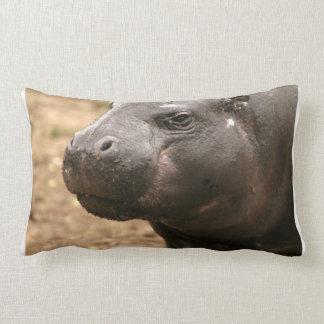 Almohada enana del hipopótamo