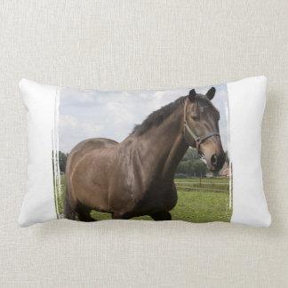 Almohada excelente del caballo