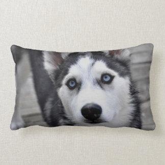 Almohada fornida del perrito
