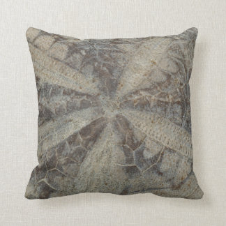 Almohada fósil