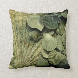 Almohada fósil de la colección de Shell de concha