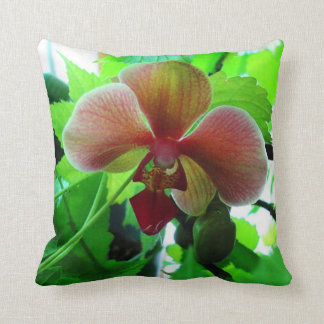 Almohada, fotografía hermosa de la orquídea del