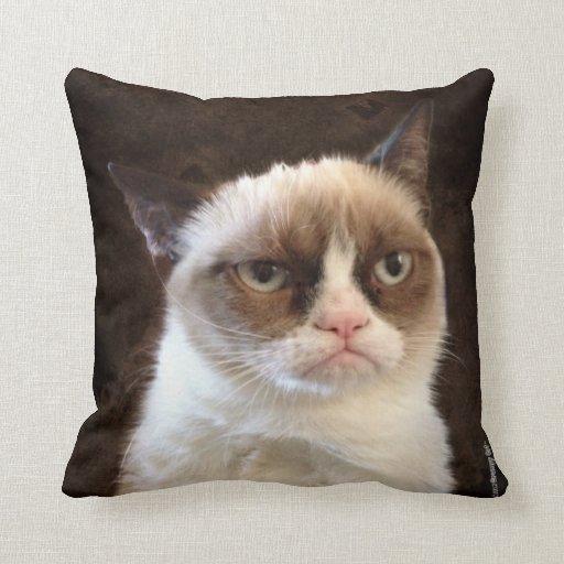 Almohada gruñona de Brown del gato