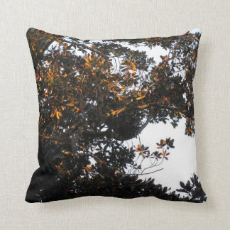 Almohada ligera de oro del árbol de la magnolia