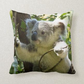 Almohada linda del oso de koala