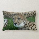 Almohada manchada del guepardo