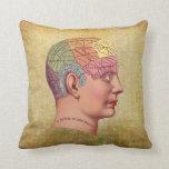 Almohada médica de la anatomía del cerebro del vin