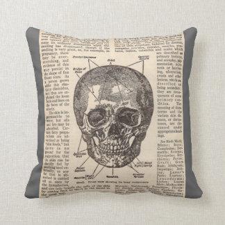 Almohada médica del cráneo humano de la anatomía