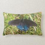 almohada negra y azul de la mariposa