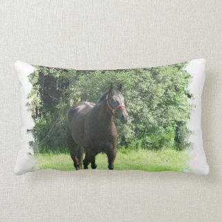 Almohada oscura del caballo de bahía