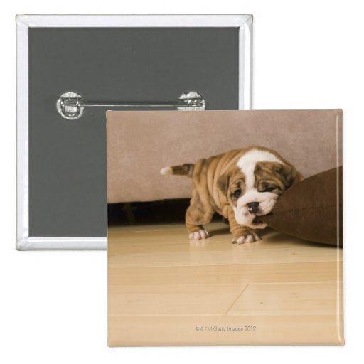 Almohada penetrante del perrito inglés del dogo pin cuadrado