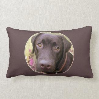 Almohada perro labrador Jimmy