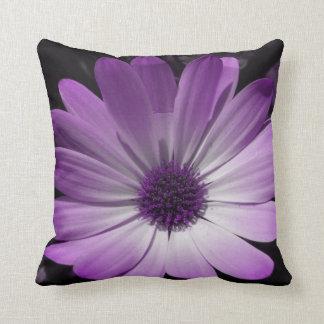 Almohada púrpura de la flor de la margarita