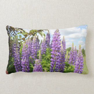 Almohada púrpura del Lupine