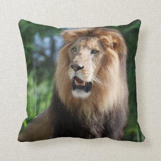 Almohada real del león