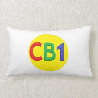 Almohada rectangular CB1