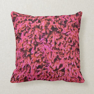 Almohada rosada del modelo del musgo