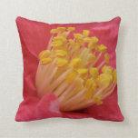 Almohada rosada y amarilla intrépida de la flor