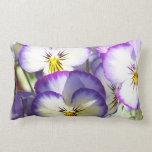 Almohadas blancas y púrpuras de las violas
