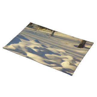 Almohadas de la nieve manteles