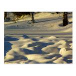 Almohadas de la nieve postal