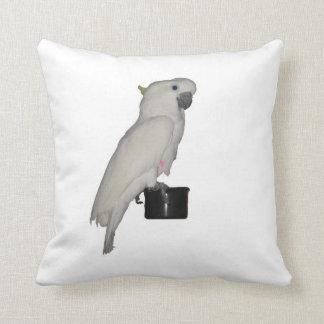 Almohadas del Cockatoo