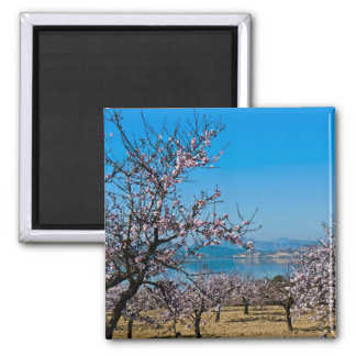 Almond Blossom 3 2 Inch Square Magnet