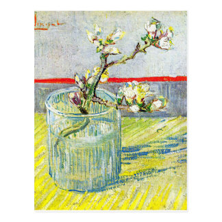 Almond Blossom Branch Postcard