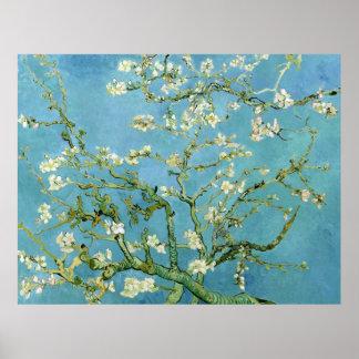 Almond Blossom Branches (F671) Van Gogh Fine Art Poster