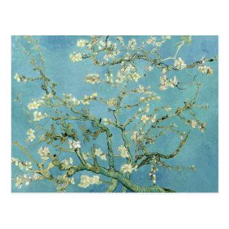 Almond Blossom by Van Gogh Fine Art Postcard