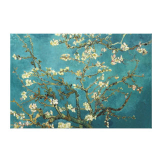 Almond Blossom Canvas