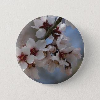 Almond Blossom Pinback Button