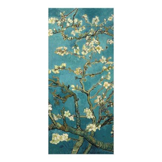 Almond Blossom Rack Card