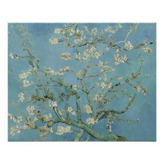Almond Blossoms by Vincent Van Gogh Poster