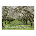 Almond Blossoms Notecard
