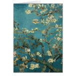Almond Branches in Bloom Card