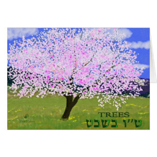 Almond in Bloom Greeting Card