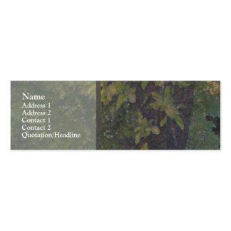 Almond Tree 1 Mini Business Card