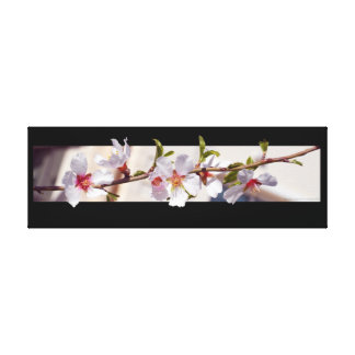 almond tree flower blossom wrapped canvas
