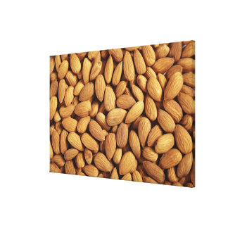 Almonds Canvas Print