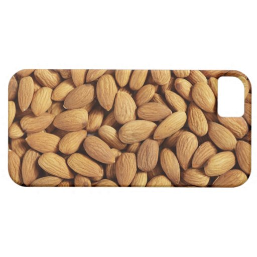 Almonds iPhone 5 Cover