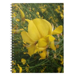 Almorta amarilla libro de apuntes con espiral