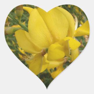 Almorta amarilla pegatina en forma de corazón